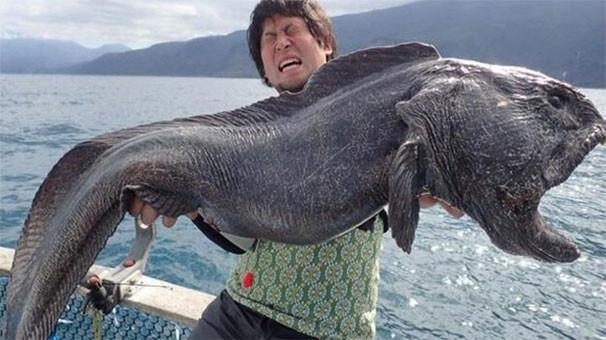 Dev balık şoke etti!