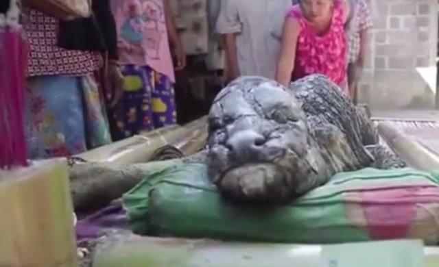 Tayland'da yaşanan olay dünyayı şaşkına çevirdi!