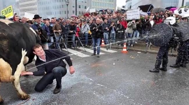 Dünyanın en ilginç protestoları