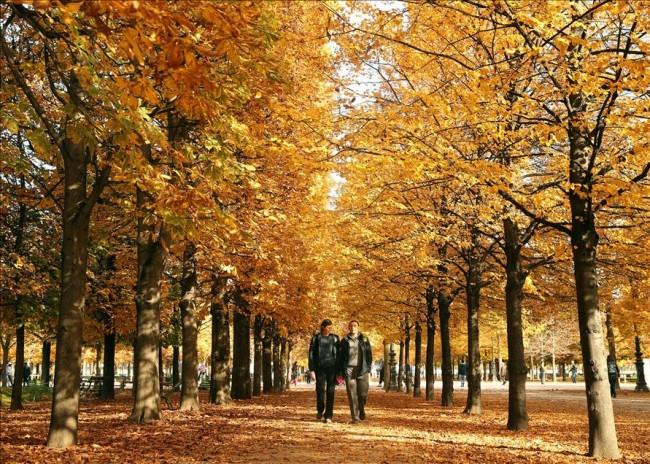 Paris'te sonbahar bir başka oluyor