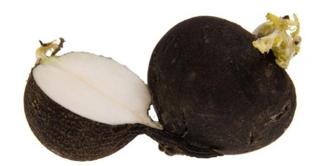 Siyah turp ile bal karışımının inanılmaz faydası