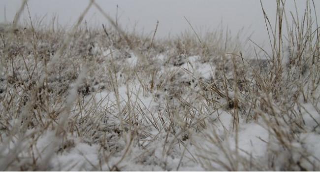 Ardahan'a kar yağdı