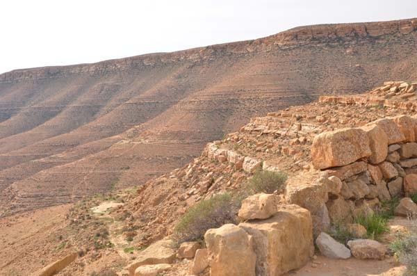 Tunus'ta dinozorların ayak izleri bulundu