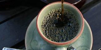 Fil dışkısından en pahalı kahve