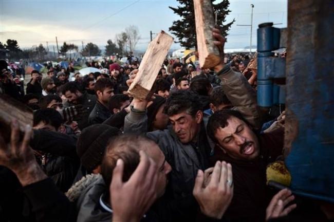 Komşuda mültecilerin odun izdihamı !