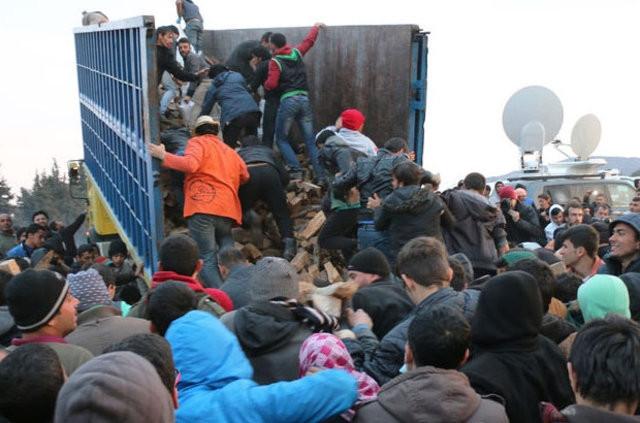 Sığınmacıların odun izdihamı