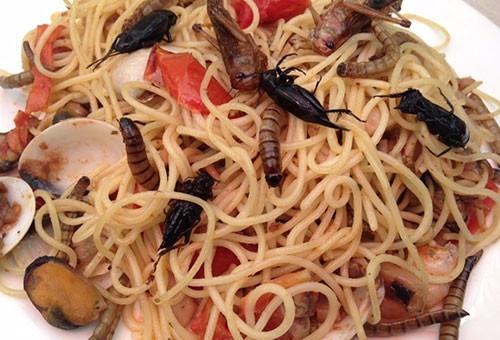 Avrupa Birliği'nin yeni gıda maddesi: Böcekler