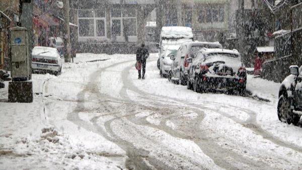 Mart'ın 30'unda lapa lapa kar yağdı