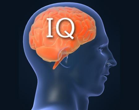 IQ testinde Einstein ve Hawking'i geçtiler