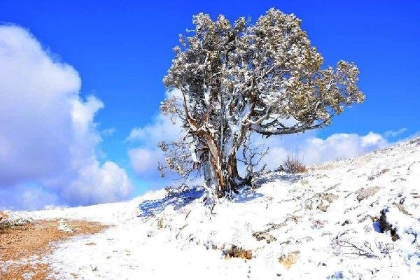 Denizli'ye Mayıs'ta kar sürprizi