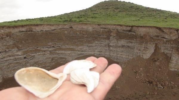 Kars'ta deniz kabuğu ve kumu bulundu