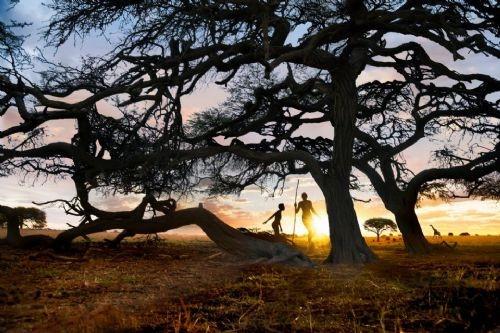 National Geographic'in Instagram hesabından muhteşem kareler