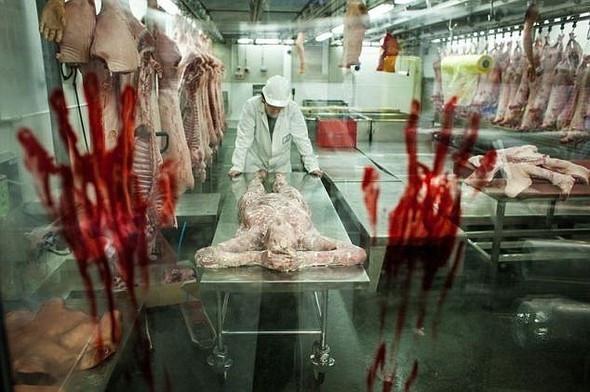 Çin'den insan eti iddiasına cevap geldi