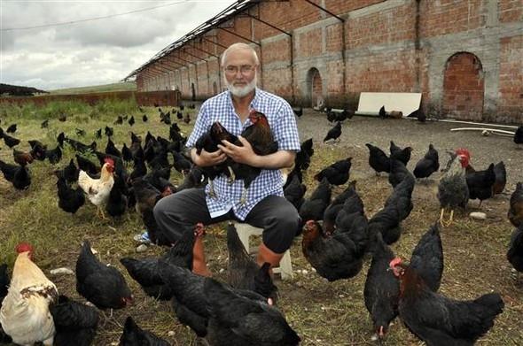 Yediği yumartayı beğenmedi, çiftlik kurdu