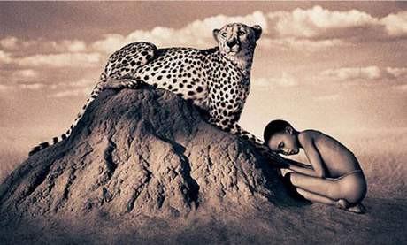 İnsan ve hayvan