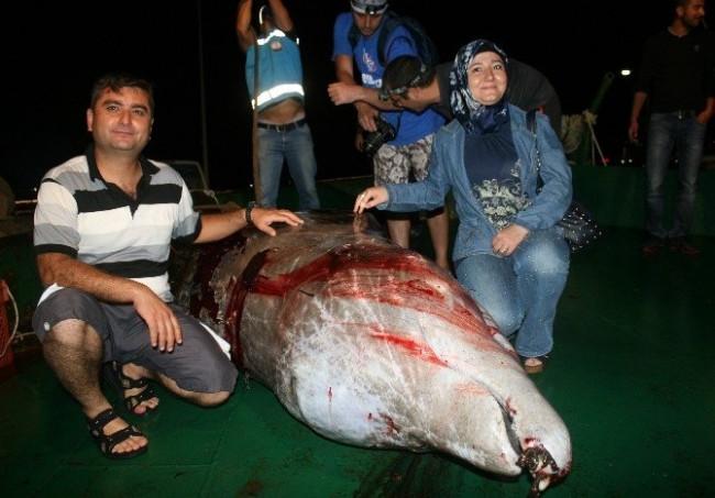 Yaralı Balina Kurtarılamadı