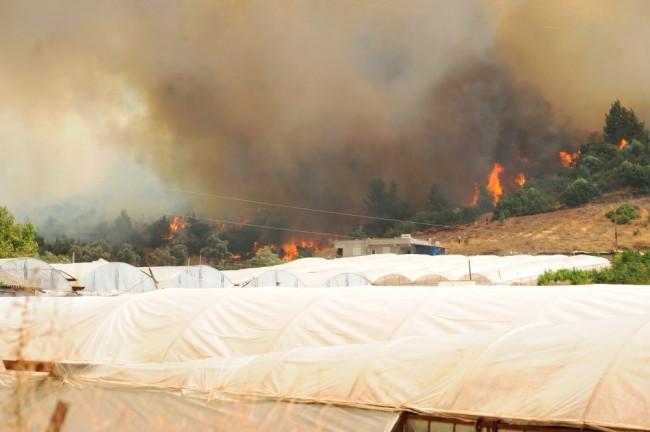 Tatil cennetinde yangın büyüyor! İnsanlar kaçıyor