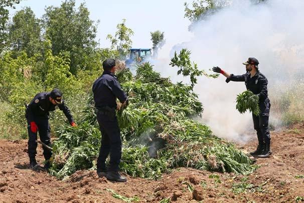 PKK'nın finans kaynağı kurutulacak !