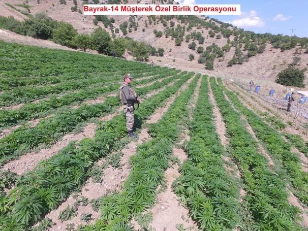 Lice'de PKK'nın bomba yüklü 22 aracı yakalandı !