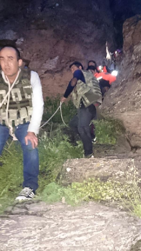 Aileye ayılar saldırdı: 2 ölü, 2 yaralı