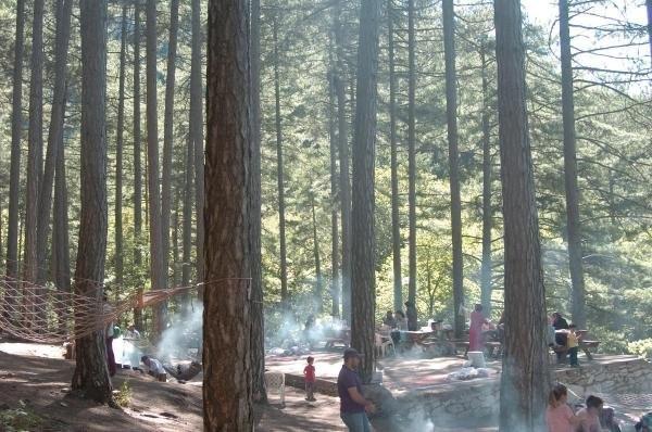 Kazdağları piknikçi mangalıyla duman altı