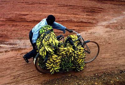 Resimlerle Afrika
