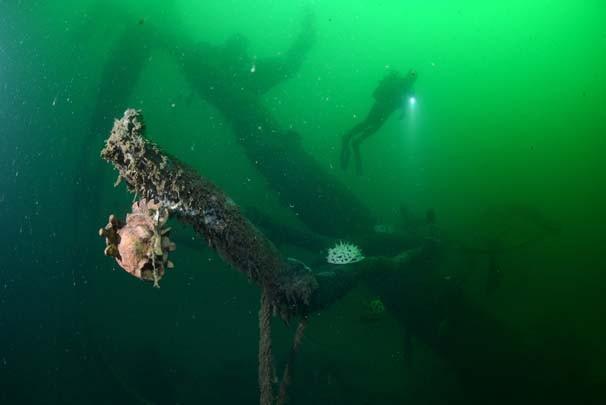 Felaketin izleri su altında müzeye dönüştü