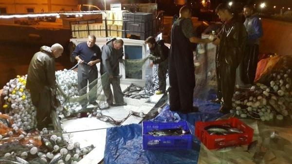Çanakkale'de tek seferde 1.500 palamut yakalandı