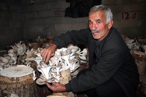 Çiftçiliği bırakıp bu işe girdi! Yıllık kazancı 50 bin lira