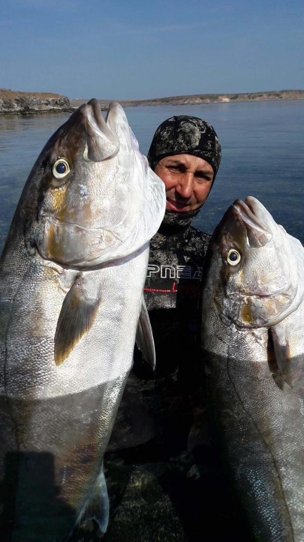 Çanakkale'de 47 kiloluk dev balık yakaladı
