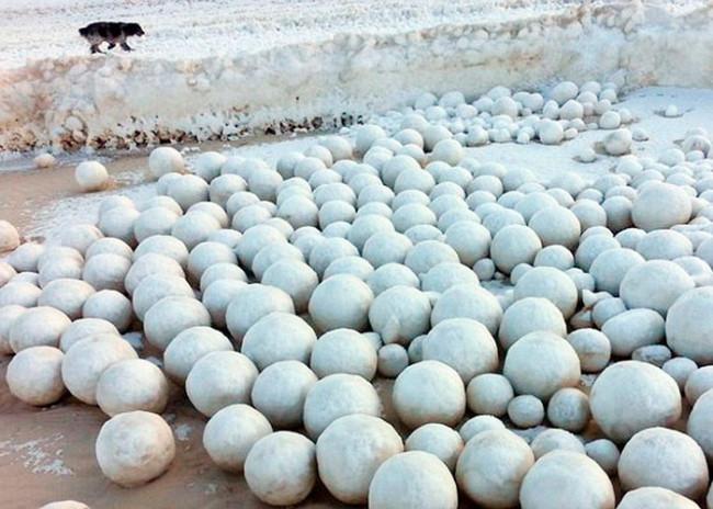 Görenleri şaşkına çeviren kar topları !