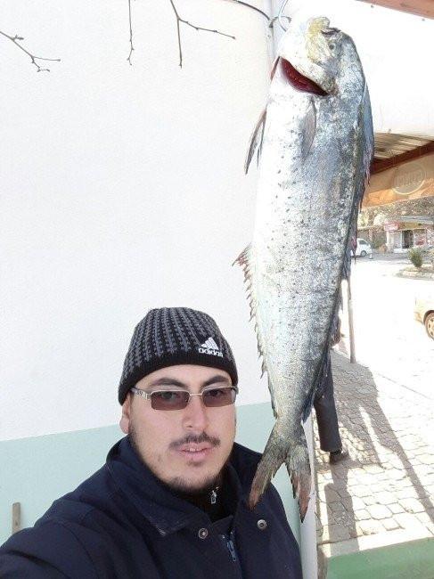 Marmara'da yakalandı, balıkçılar şok oldu !
