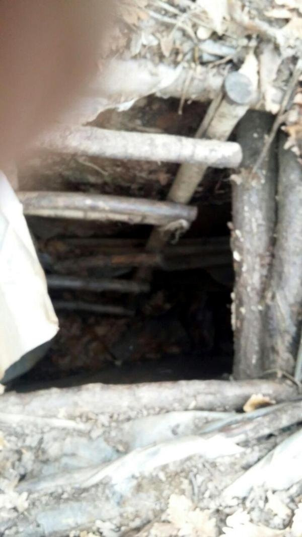 Diyarbakır'da 5 odalı mağara bulundu