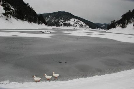 Göl buz tutunca..