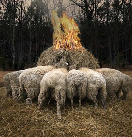 Ateşin her hali