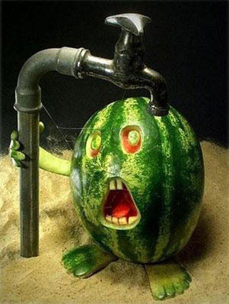 Meyve sebze sanatı