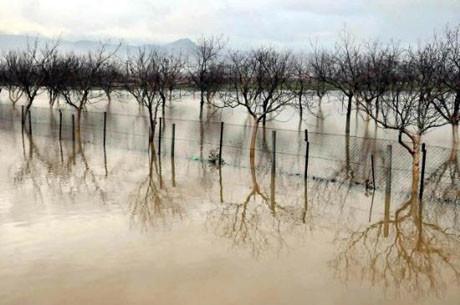 Muğla ovası göl oldu !