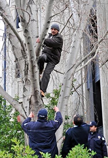 TBMMde ağaca çıkma eylemi