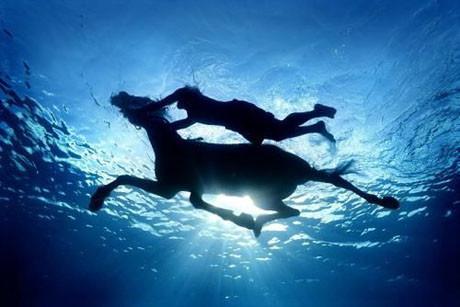 Suyun altında sanat