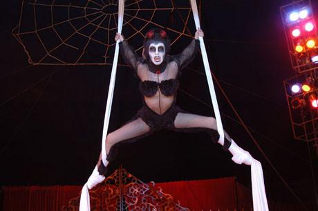 Korku sirki büyük ilgi topladı