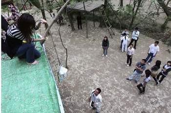 Ağacın tepesinde yaşayan kızlar