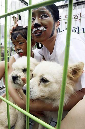 Köpek eti yenmesini böyle protesto ettiler