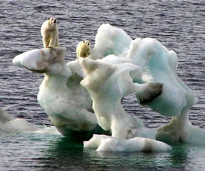 Küresel ısınmanın 5 etkisi