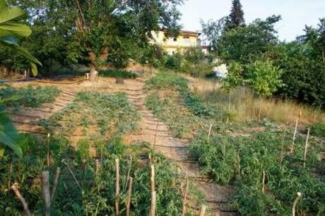 Üsküdar doğa bahçesi