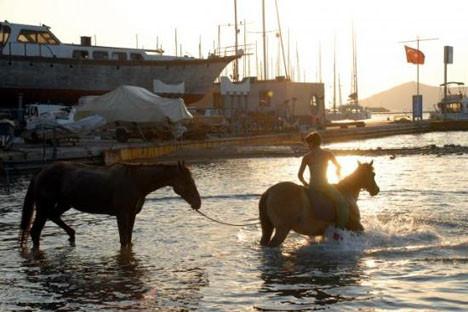 Atlarıyla birlikte yüzdü