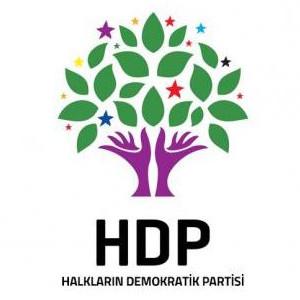 HDP'LİLER İFADEYE ÇAĞRILDI ! İŞTE İLK AÇIKLAMA
