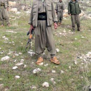 PKK iş başında: 1'i polis 4 kişi kaçırıldı !