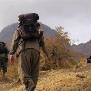 AK Partili vekil: ''PKK ateşkes istiyor''