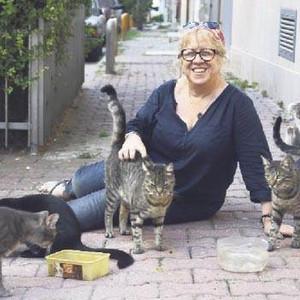 İstanbul'un kedileri bu yabancılara emanet !