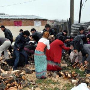 Elazığ'da odun kapma izdihamı !